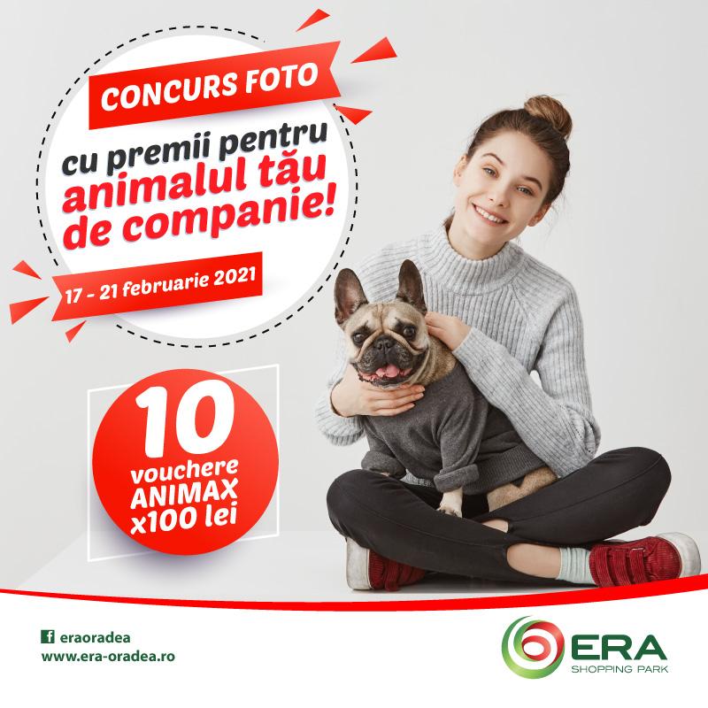 Concurs FOTO cu premii pentru animalul tau de companie